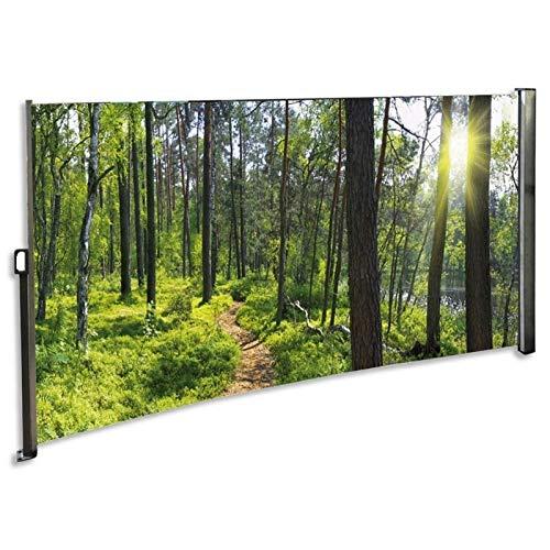 Seitenmarkise mit Foto Wald 160 x 300 cm