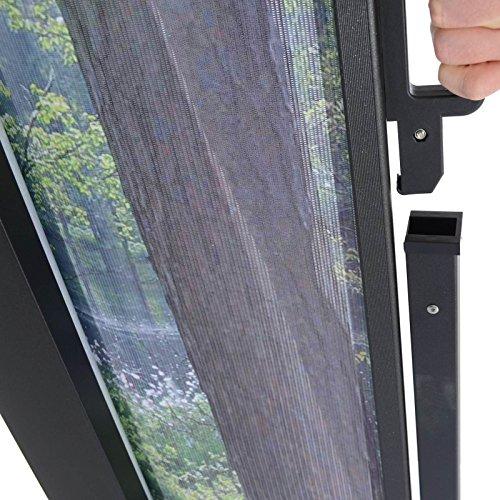 Seitenmarkise mit Foto Wald 160 x 300 cm - 4