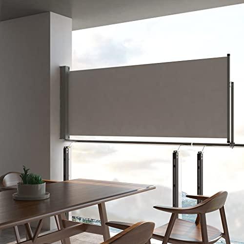 vidaXL Seitenmarkise 100×300 cm Grau - 2